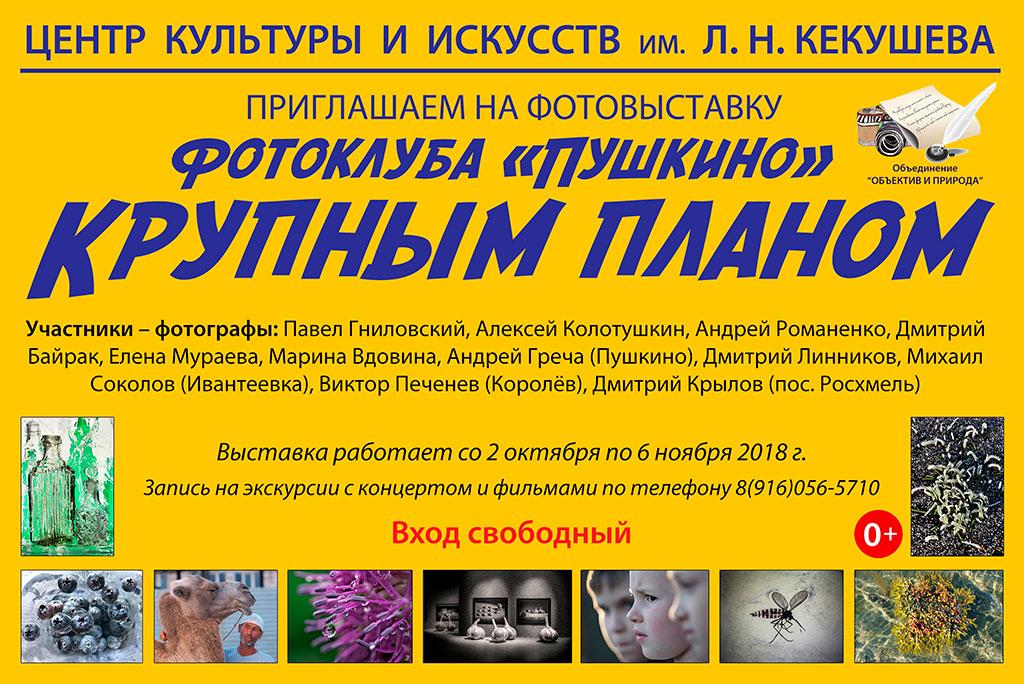 Выставка фотоклуба «Пушкино»
